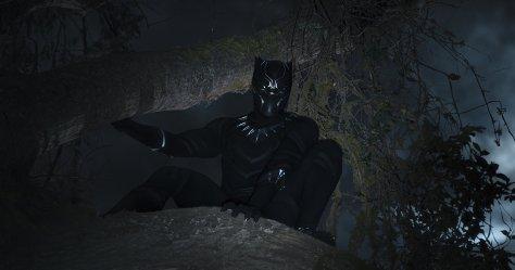 blackpantherforest.jpg