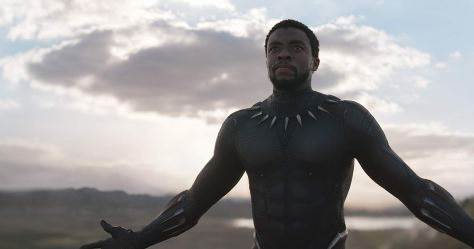 blackpantherabouttofight.jpg